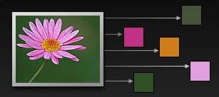 Démonstration de l'obtention de couleurs à partir d'une image