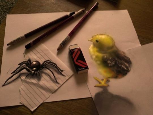 Une araignée et un poussin hyper-réaliste dessinés sur plusieurs feuilles